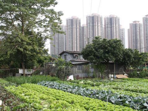 Za právo na zeleň