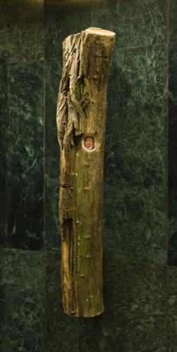 Hejmova cesta ke svobodě | KunstWerk, projekt NevadíNová scéna 2010 / Revolver Revue 79 (s. 63-70)