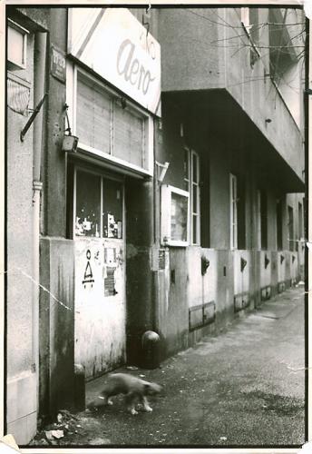 Vyvražďování motýlů   foto: archiv žižkovského kina Aero