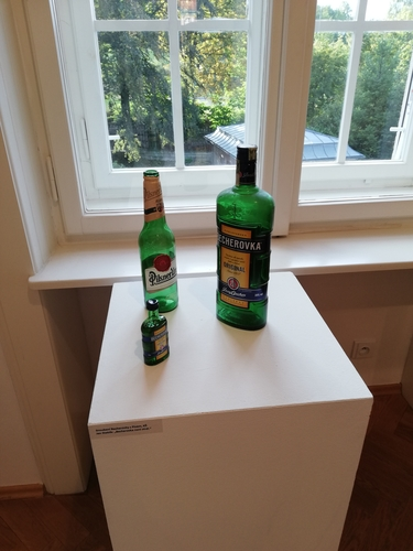 Řeč ze zahájení výstavy Jana Steklíka v Becherově vile (Galerie umění Karlovy Vary, 11. 9. – 8. 11. 2020) | foto Duňa Slavíková