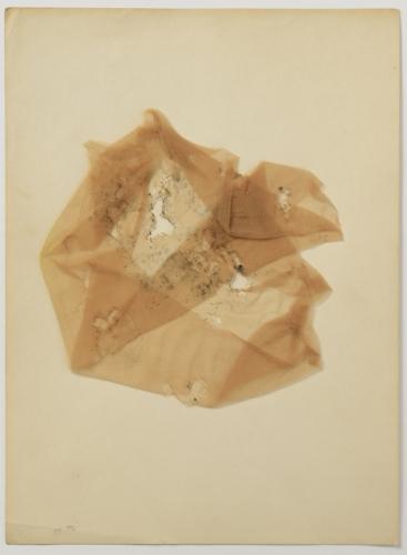 Tato víra je i pozadím roudnické výstavy (rozhovor s Duňou Slavíkovou) | Vladimír Burda, Báseň růže, 60. léta, soukromá sbírka, foto Oto Palán
